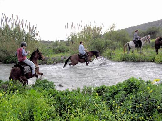 Had Nes Israel  city images : Had Nes horse riding , Golan Heights | Israel trip planner
